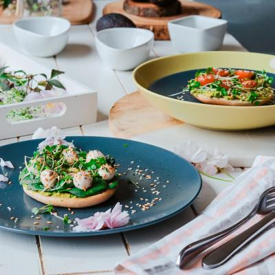 New York District 2018 Picnic